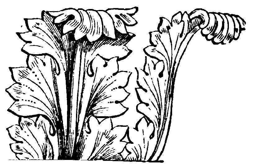 Akanthus, Distelartiges, lappiges Blattornament, das seit der Antike Verwendung findet.
